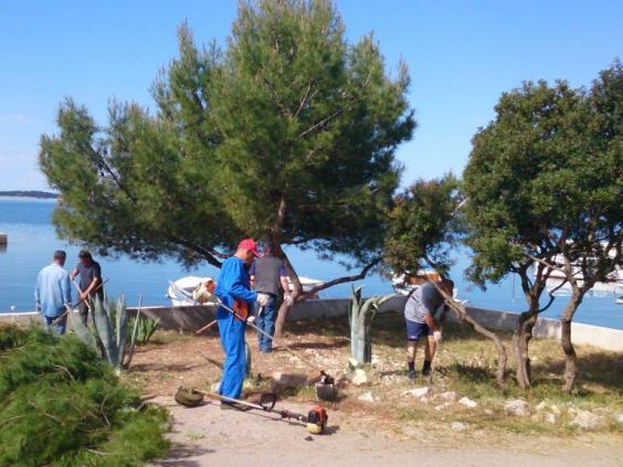 Poziv volonterima za sudjelovanje u Zelenoj čistki – Ekološka udruga Žir